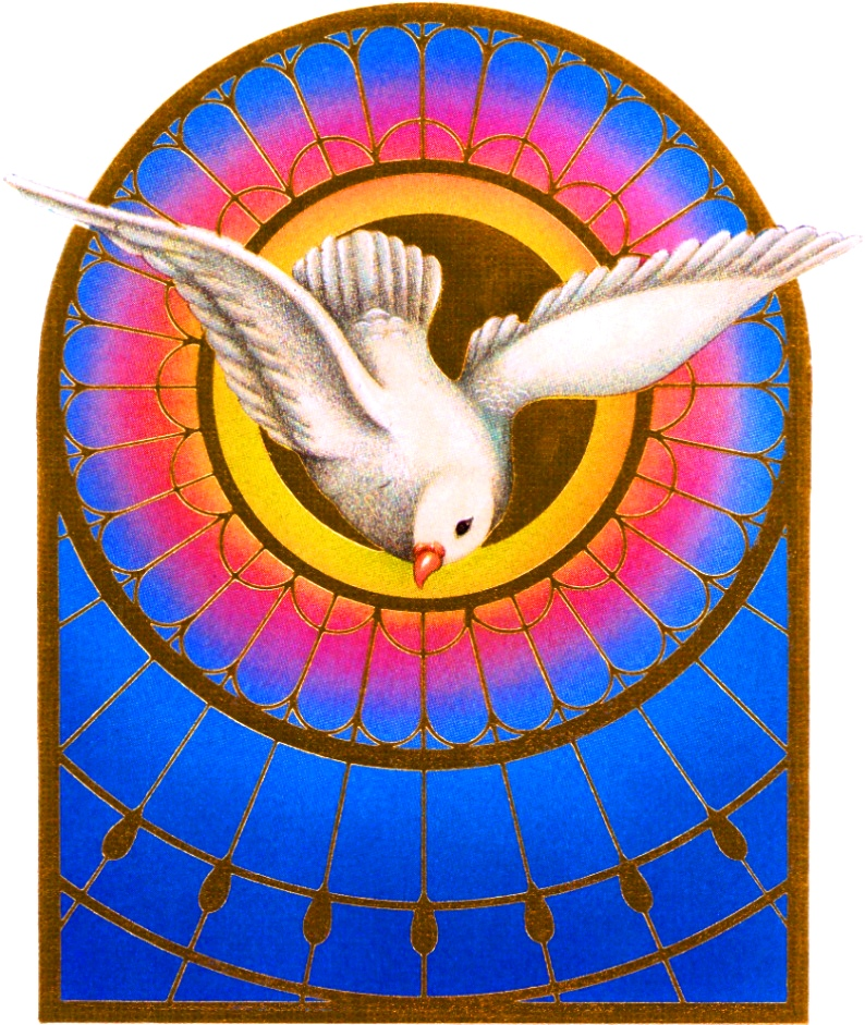 Catholic bible 101 the holy spirit the holy spirit is the 3rd person of the blessed trinity and the one most active in the world today the bible says that the holy spirit created negle Image collections